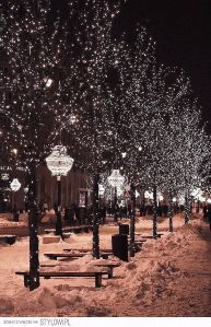 Doesn't everything look pretty and magical with fairy lights during the winter months?