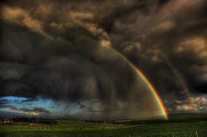 RainbowShower