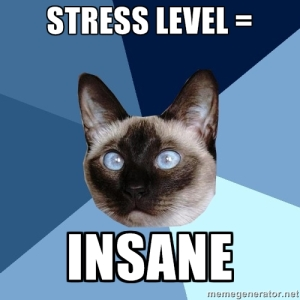 Chronic Illness Cat understands that stress levels can increase when living with a chronic illness